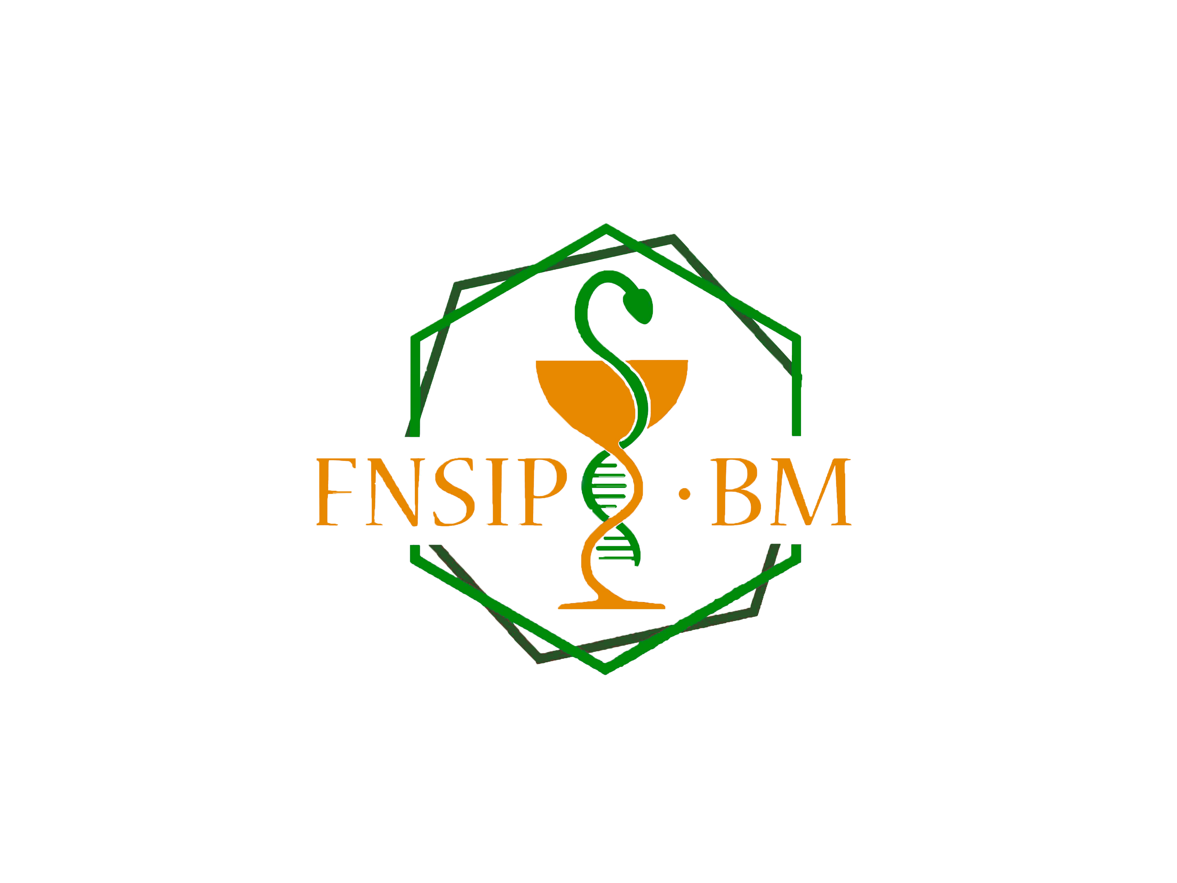 FNSIP-BM